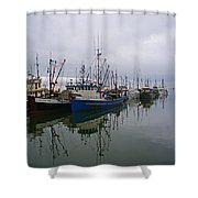 Western Chief Reflections Shower Curtain