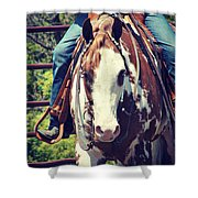 Western Paint Horse Shower Curtain