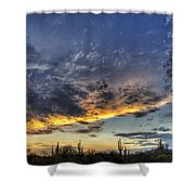 Western Skies  Shower Curtain