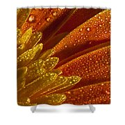 Wet Blumen Shower Curtain