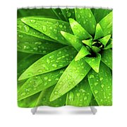 Wet Foliage Shower Curtain