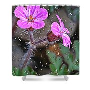 Wet Geranium  Shower Curtain