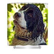 Wet Puppy Shower Curtain