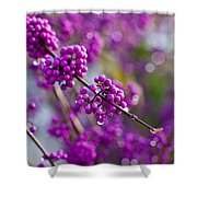 Wet Purple Shower Curtain