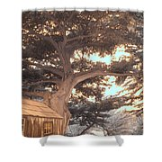 Whaler's Cabin Shower Curtain by Jane Linders
