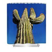 What A Big Cactus Shower Curtain