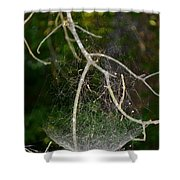 What Webs We Weave Shower Curtain