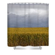 Wheat Field And Storm Shower Curtain