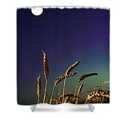 Wheat Field At Night Under The Moon Shower Curtain
