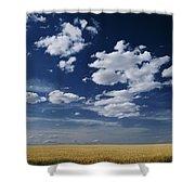 Wheat Field, Central Washington Shower Curtain
