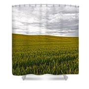 Wheat Field Homestead Shower Curtain