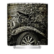 Wheels And Roots  Shower Curtain