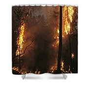 When Flames Crown Into Treetops Shower Curtain
