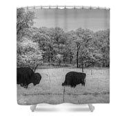 Where The Buffalo Roam Shower Curtain