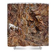 Where Wolves Don't Tread Shower Curtain