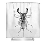 Whipscorpion X-ray Shower Curtain