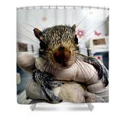 Whiskers The Name Shower Curtain