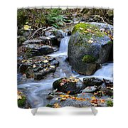 Whisketown Stream In Autumn Shower Curtain
