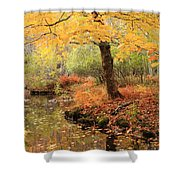 White Ash And Stream In Autumn Shower Curtain