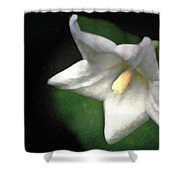 White Balloon Flower-faux Painting Shower Curtain