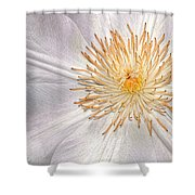 White Clematis Shower Curtain