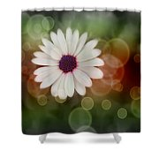 White Daisy In A Sunset Shower Curtain