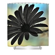 White Daisy Silhouette Shower Curtain