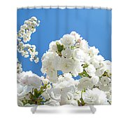 White Floral Blossoms Art Prints Spring Tree Blue Sky Shower Curtain