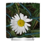 White Flower On The Fence Shower Curtain