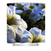 White Flowers At Dusk 2 Shower Curtain