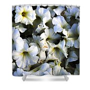 White Flowers At Dusk Shower Curtain