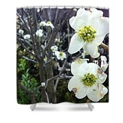 White Flowers Shower Curtain