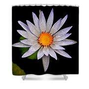 White Frost Flower Shower Curtain