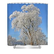 White Frost Tree Shower Curtain