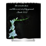 White Gladiola Isaiah 58 2 Shower Curtain