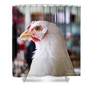 White Hen Shower Curtain
