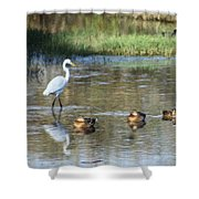 White Heron And Baby Ducks Shower Curtain
