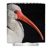 White Ibis Portrait Shower Curtain