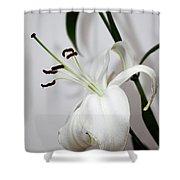 White Lily Portrait Shower Curtain