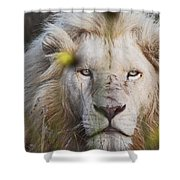 White Lion And Yellow Flowers Shower Curtain