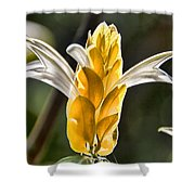 White Mixed With Yellow Shower Curtain