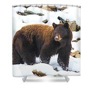 White Nose Shower Curtain