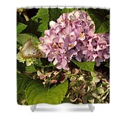 White Peacock On Hydrangea Shower Curtain