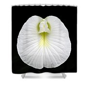 White Pearl Flower Shower Curtain