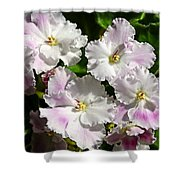 White Pink Ruffled Violet Shower Curtain
