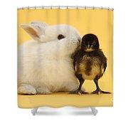 White Rabbit And Bantam Chick On Yellow Shower Curtain