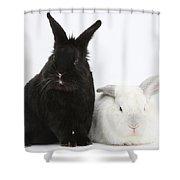 White Rabbit With Black Rabbit Shower Curtain