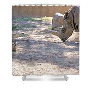 White Rhino And Ibex Shower Curtain