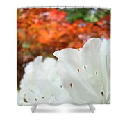 White Rhododendron Flowers Autumn Floral Prints Shower Curtain by Baslee Troutman