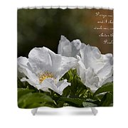 White Roses - Purge Me With Hyssop Shower Curtain